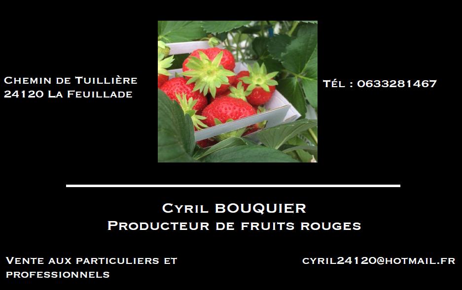 Carte de visite fraise